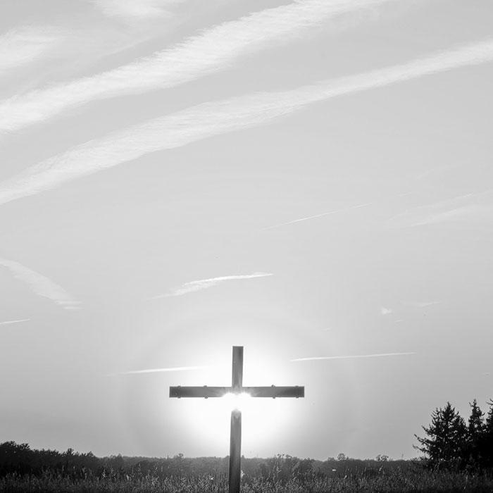 Cross light BW